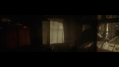 False-Flag-Zinea.eus-Kimuak